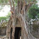 cambodge 2010 (98)
