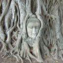 Ayuttaya Thailande 06 (35)