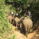 Voyage Thaìlande 02-03-2010 257