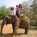 Voyage Thaìlande 02-03-2010 238